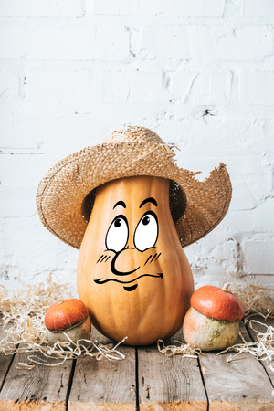 close up view of ripe pumpkins with drawn bewildered facial expression and straw hat on wooden surface and white brick wall backdrop Stockfoto