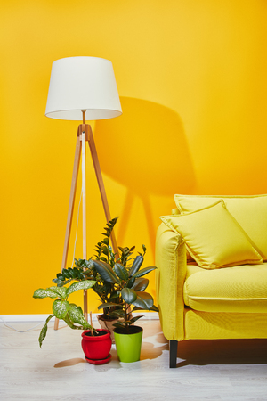 Sofa, green plants and floor lamp near yellow wall Stock Photo