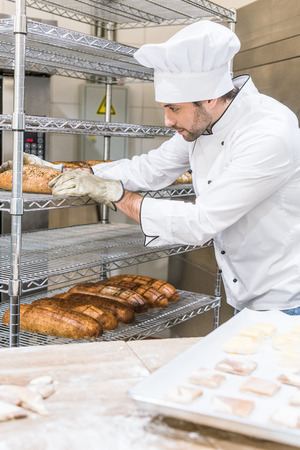adult male baker in white chefs uniform putting fresh hot bread at rack