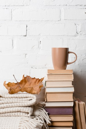 pile of books, blanket, dry autumn leaf and cup of hot beverage near white brick wall