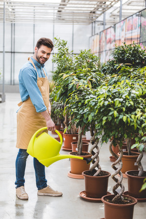 Smiling man watering green plants in greenhouse