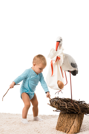 toddler boy pulling out sticks from decorative stork nest isolated on white Stock Photo