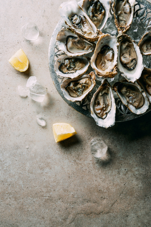 top view of arranged oysters in bowl, ice cubes and lemon pieces on grey tabletop