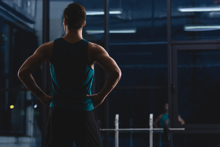 Back view of silhouette of muscular sportsman standing in sports center Stockfoto