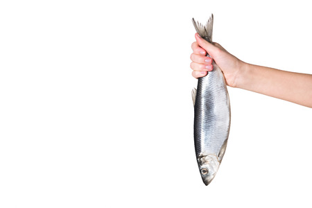 cropped image of woman holding fish in hand isolated on white