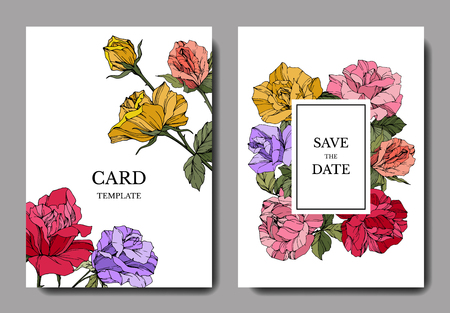 Vector White card rose flower. Wedding background card floral decorative border engraved ink art. Thank you, rsvp, invitation elegant card illustration graphic set banner. Illustration