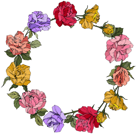 Vector Rose. Floral botanical flower. Wild spring leaf. Red, pink and purple engraved ink art. Frame border ornament wreath.