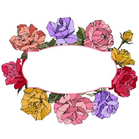 Vector Rose. Floral botanical flower. Wild spring leaf. Red, pink and purple engraved ink art. Frame border ornament wreath.