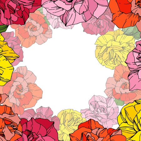 Vector Rose. Floral botanical flower. Wild spring leaf. Red, pink and yellow engraved ink art. Floral border square illustration. Illustration