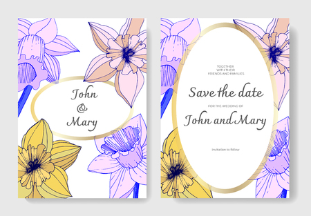 Vector Narcissus. Wedding background card floral decorative border. Yellow and purple engraved ink art. Thank you, rsvp, invitation elegant card illustration graphic set banner.