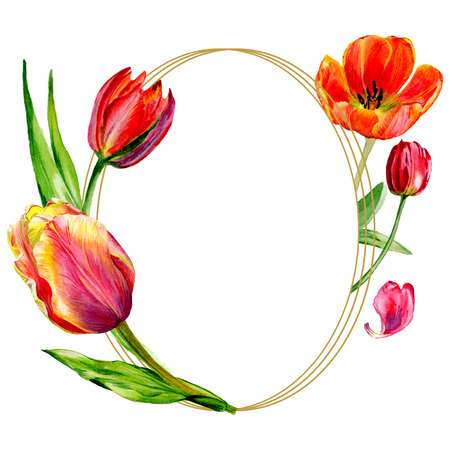Amazing red tulip flower with green leaf. Hand drawn botanical flower. Watercolor background illustration set. Frame border ornament round.