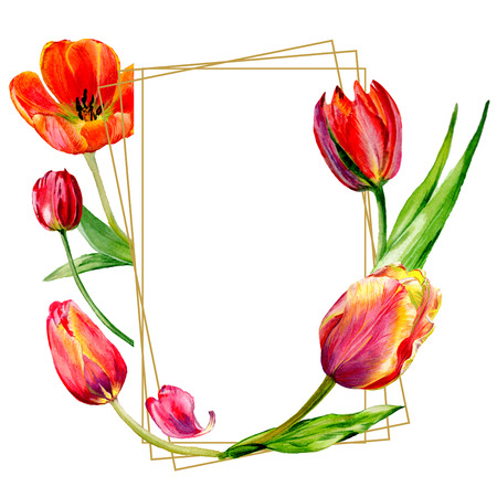 Amazing red tulip flower with green leaf. Hand drawn botanical flower. Watercolor background illustration set. Frame border ornament crystal. Geometric quartz polygon crystal stone. Stockfoto