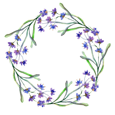 Purple lavender. Floral botanical flower. Wild spring leaf. Watercolor background illustration set. Wreath frame border. Stock fotó