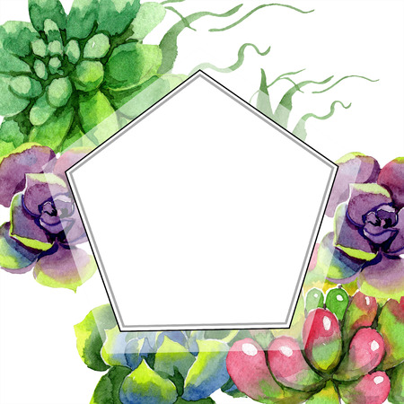 Amazing succulent. Floral botanical flower. Watercolor background illustration set. Geometric  frame. Aquarelle hand drawing succulent. 写真素材
