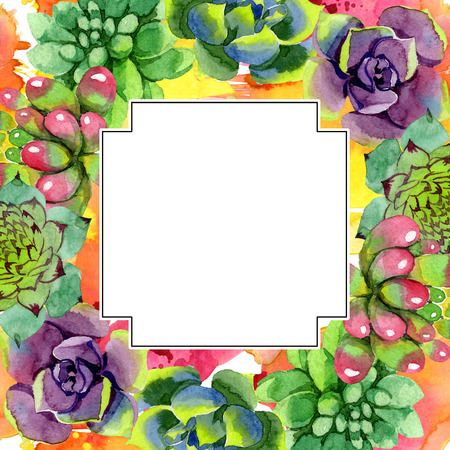 Amazing succulent. Floral botanical flower. Watercolor background illustration set. Geometric frame square. Aquarelle hand drawing succulent. 写真素材 - 113293798