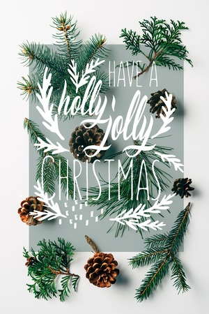 flat lay with green branches and pine cones arranged on white backdrop with