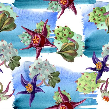 Duvalia flower. Watercolor background illustration set. Aquarelle hand drawn plant. Seamless background pattern. Fabric wallpaper print texture.