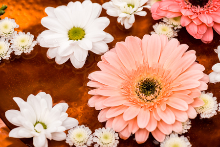 daisies and gerbera flowers in metalic plate for spa procedure 스톡 콘텐츠