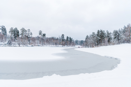 scenic view of snow covered trees and frozen lake in winter park