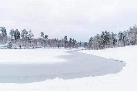 vista panoramica di alberi innevati e lago ghiacciato nel parco invernale winter