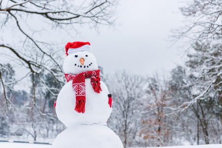 funny snowman in scarf, mittens and santa hat in winter park