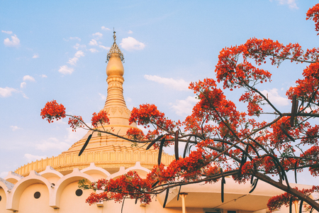 architecture of beautiful ancient indian temple and blooming tree Stock Photo