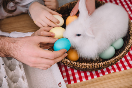 cropped shot of people giving colored eggs to easter rabbit