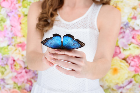 cropped shot of woman holding beautiful blue butterfly 写真素材