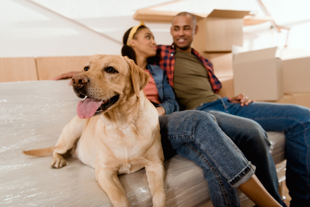 african american couple with labrador dog resting on sofa Stockfoto
