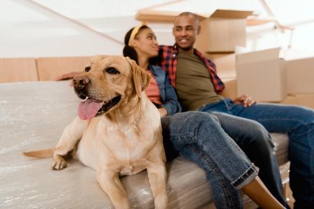 Pareja afroamericana con perro labrador descansando en el sofá