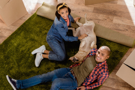 african american couple with labrador dog moving to new apartment