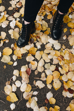 cropped shot of woman in beautiful leather boots standing on road covered with fallen leaves