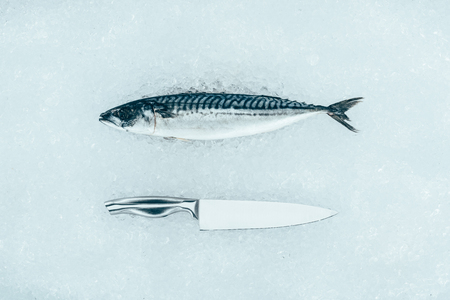 top view of raw mackerel fish and knife on ice Stok Fotoğraf