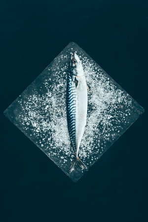 top view of fresh raw mackerel on slate board isolated on black Zdjęcie Seryjne