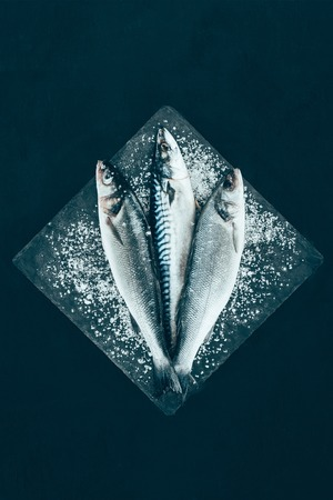 top view of fresh raw mackerel and sea bass on slate board isolated on black