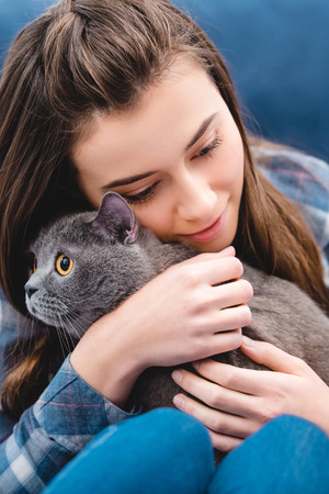 close-up view of girl hugging adorable british shorthair cat at home Фото со стока