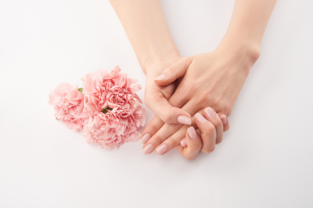 Partial view of female hands and carnations flowers on white background