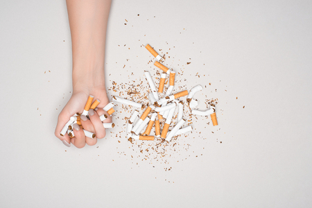 Partial view of woman posing with broken cigarettes isolated on grey, stop smoking concept