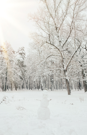 scenic view of snowy trees and snowman in winter forest