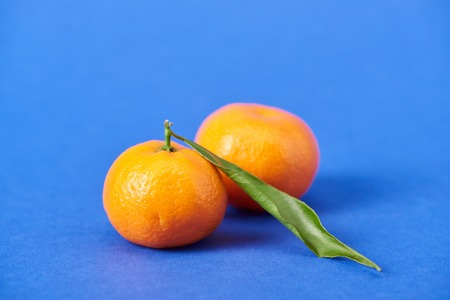 juicy organic tangerines with zest on blue background 스톡 콘텐츠