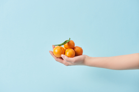 cropped view of woman holding organic tangerines in hand isolated on blue