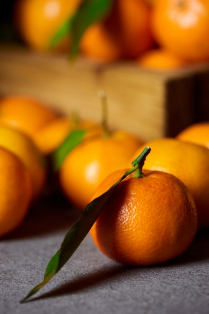 selective focus of orange clementine near tangerines with green leaves