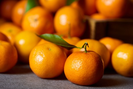 selective focus of sweet orange clementine near tangerines with green leaves