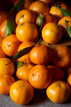 selective focus of orange tangerines with green leaves