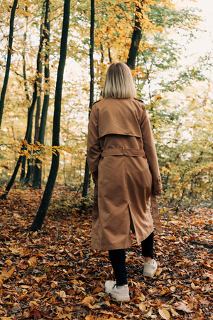 Back view of woman walking in autumn forest  Stock Photo