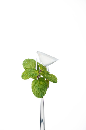 piece of coconut and mint leaves on fork isolated on white