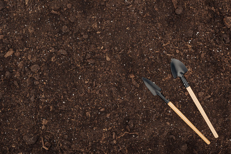 top view of shovels lying on ground, protecting nature concept