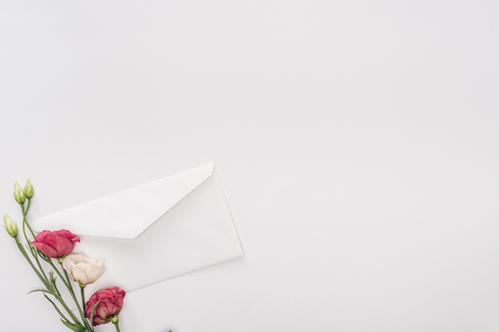 Top view of envelope and flowers isolated on white with copy space 写真素材