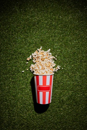 top view of popcorn lying on grass near popcorn cup