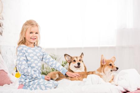 adorable kid in pajamas petting corgi dogs in bed Foto de archivo